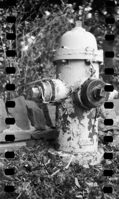 Sprocket Hydrant