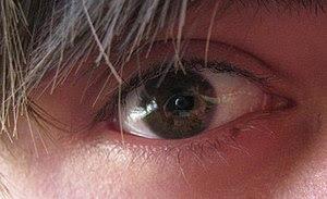 My eye, used to illustrate hazel eye colour