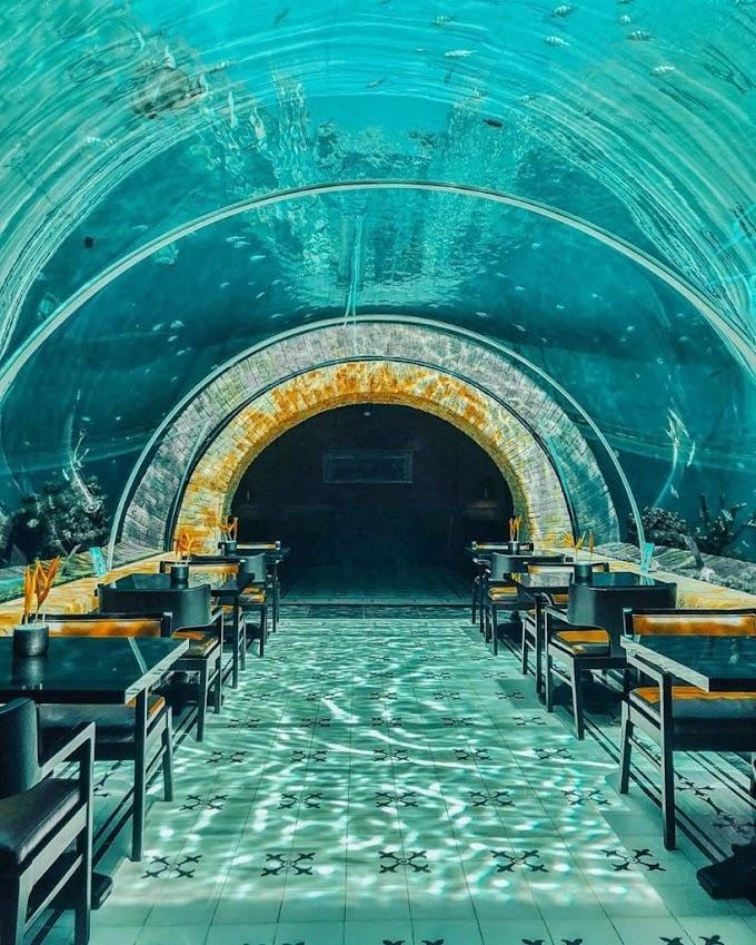 CANTIK BANGET!!! Restoran Aquarium Pertama di Bali, serasa di Bikini Bottom