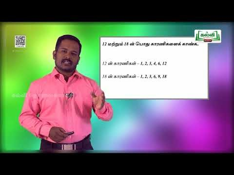 5th Maths  எண்கள் பகு எண்கள் மற்றும் பகா எண்கள்  அலகு 2 பகுதி 2 Kalvi TV