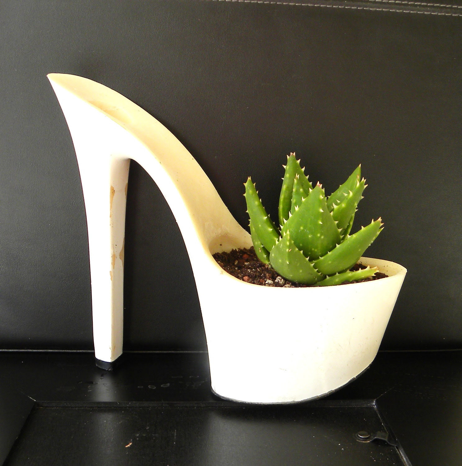 succulent planter. reclaimed stiletto high heel. bachelorette hostess gift. eco friendly. aloe plant for indoor garden