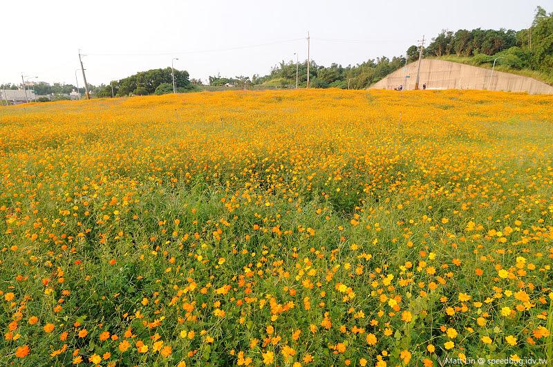 孔宅綠園 (24).jpg