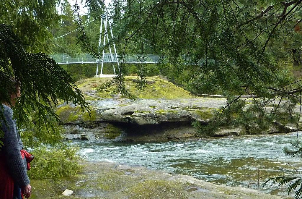 Top Bridge park, Parksville