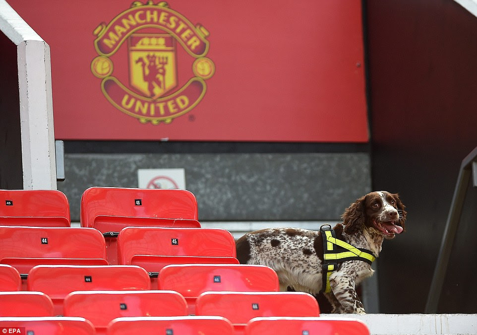 Sniffer dogs search the West Stand after stands were evacuated before the football match between Manchester United and Bournemouth