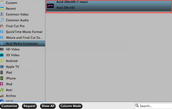 Output Davinci Resolve supported editing codec
