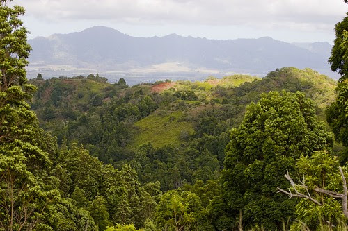 wainae mountain range