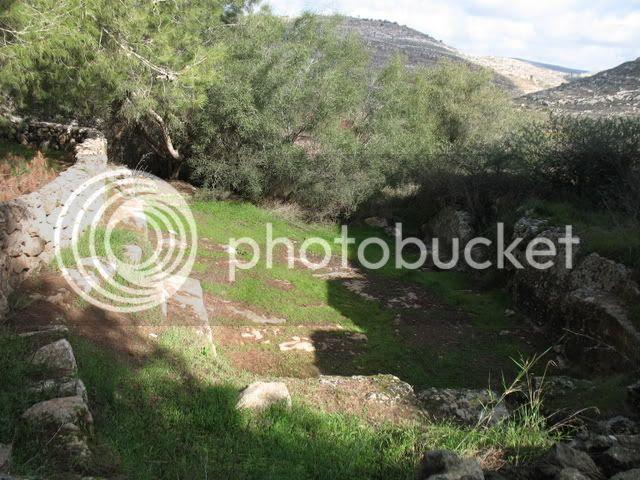 Tel Shiloh, 8