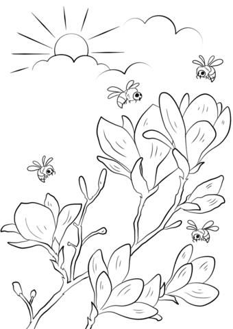 Dibujo De Ramos De Flores De Primavera Para Colorear Dibujos Para