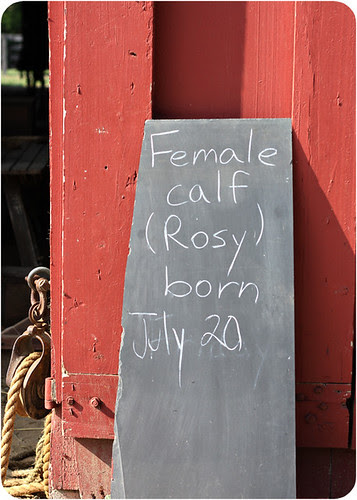 Farm Rosy sign-web.jpg