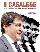 La copertina del libro su Cosentino