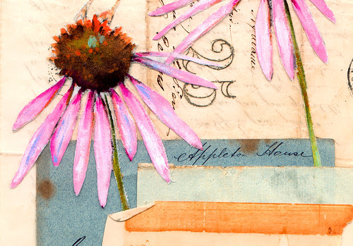 Bluebird & Coneflower Print