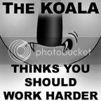 Koala Challenge 5