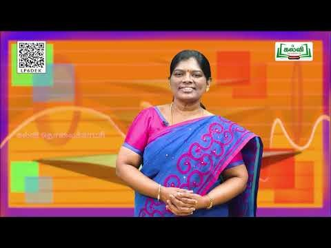 10th Science Transportation in plants and  Unit 14 Part 2 Kalvi TV