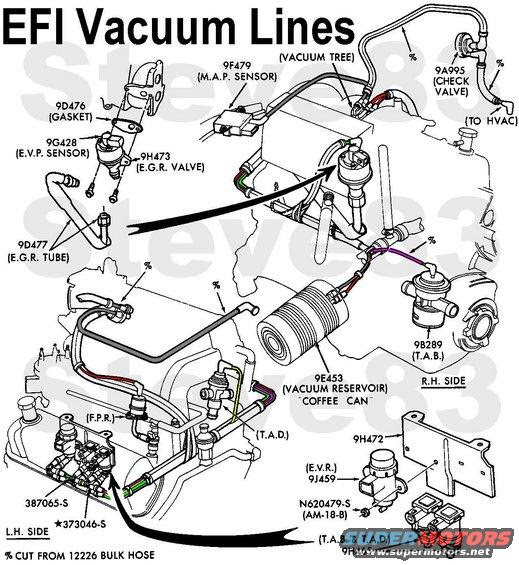 1988 Ford 302 Engine Diagram Wiring Diagram Source Source Cartazuccherobio It