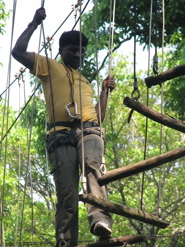 Rope_Challenge_Course_Log_Walk