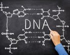 DNA is not the only factor that influences personality of genetically identical gametes