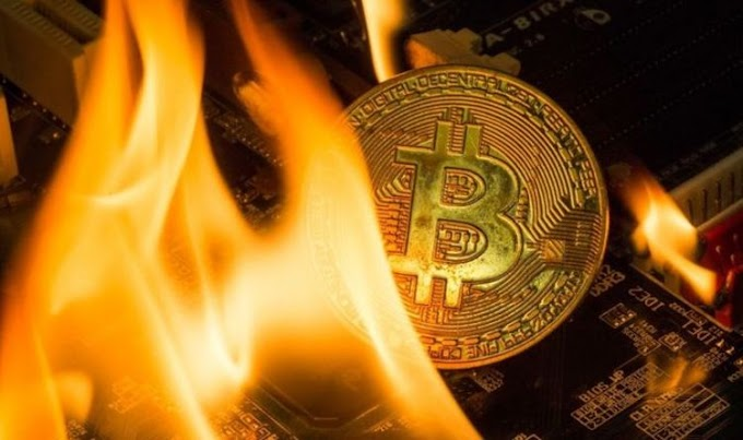 Bitcoin crash: Cryptocurrency prices tumble after Trump's scam warning - bear market panic
