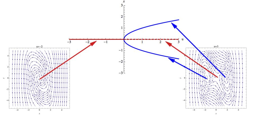 Bifurcation Diagram - MathBio