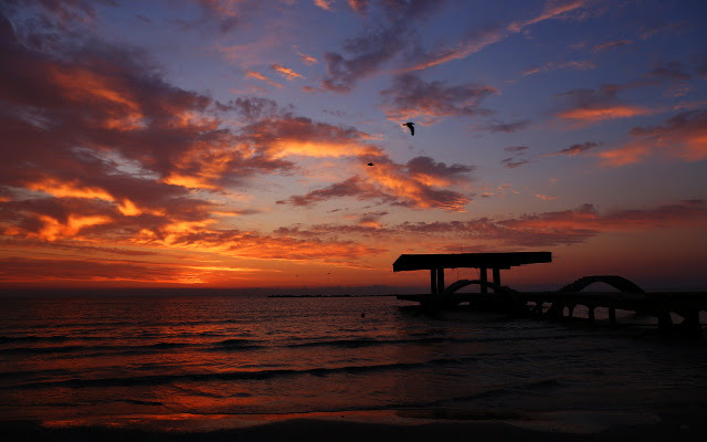 sunrise sea wallpaper