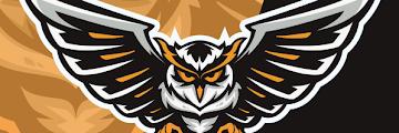 Gaming Owl