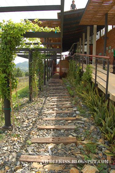 hua hin hills winery pebble walkway