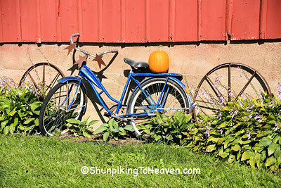 Pumpkin on an Old Bicycle, Delaware County, Iowa