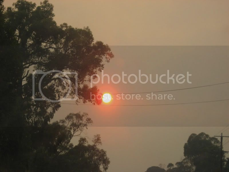 Sun on the road to Lilydale 14th February 2009 by Ian T