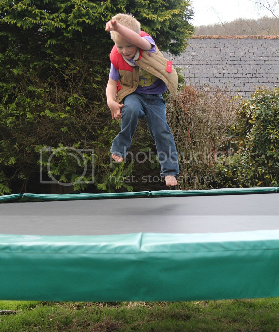 Trampoline at Lower Hearson Farm