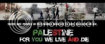 Palestin Kini