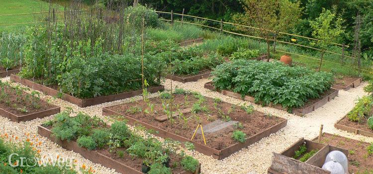 vegetable garden 2x