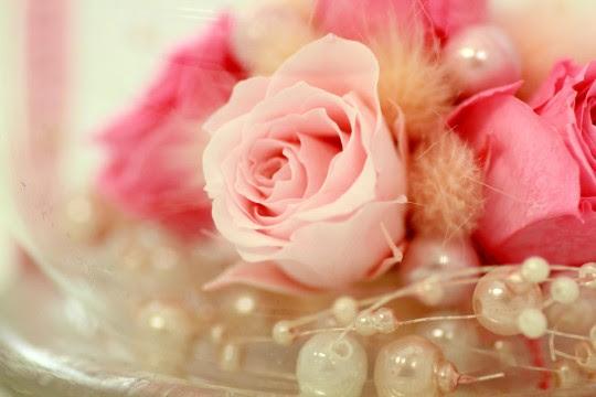 バラの飾り 商用利用ok無料の写真フリー素材を集めました総合
