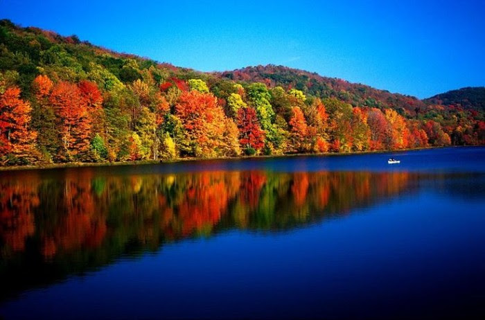 10 Relaxing Places In Nature In West Virginia