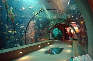 Oregon Coast Aquarium, Passages of the Deep