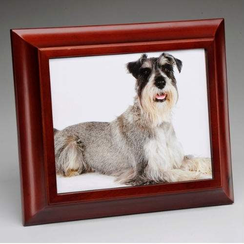 Photo Pet Urn Urns For Dogs Urn For Pet