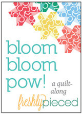 Bloom Bloom Pow Quilt-Along at Freshly Pieced