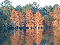 Lake Pine Creek Oklahoma