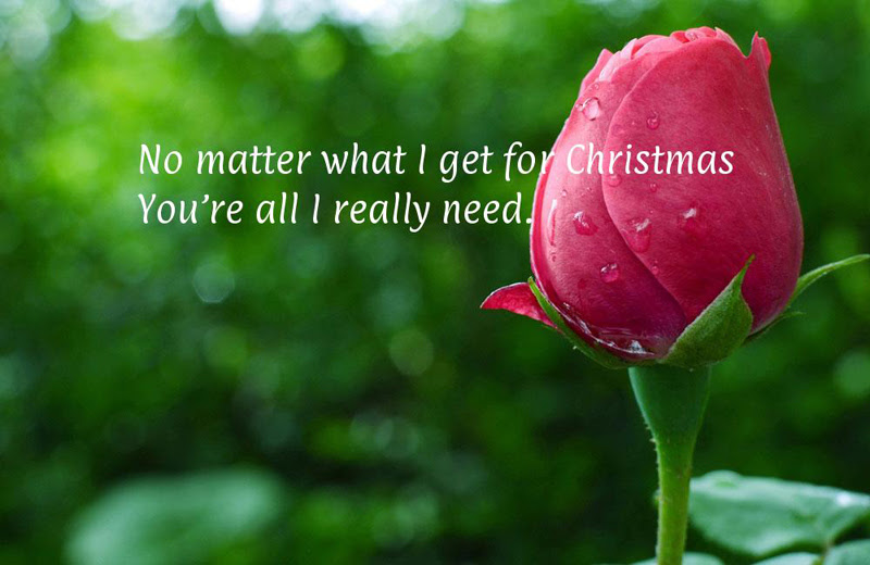 Merry Christmas Messages For Parents From Children Wishesmsg