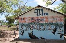 Honduras - Zacate
