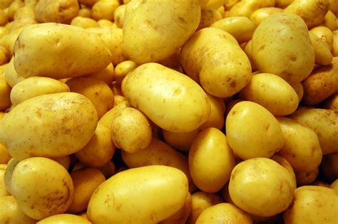 Excellent Potato Wallpaper   Full HD Pictures