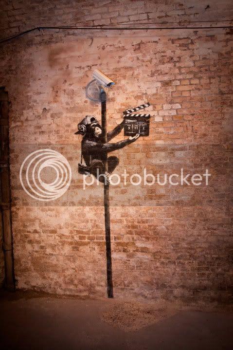 "Picture of Banksy's chimpanzee graffiti"" Title="