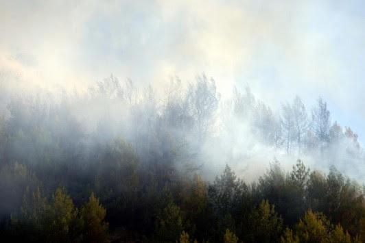 Έπιασαν 43χρονο για εμπρησμό για τις τέσσερις φωτιές στη Δυτική Ελλάδα