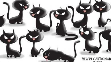 Cartoon Black Cats Cartoon