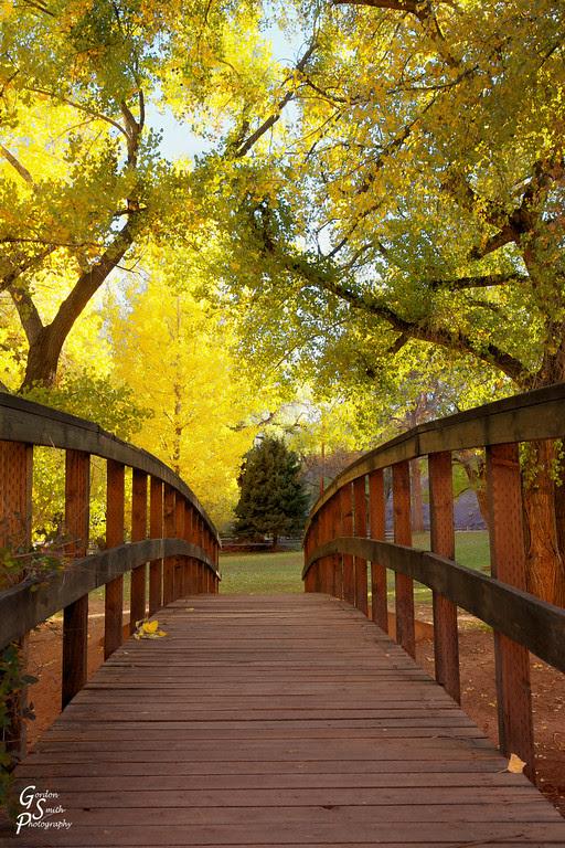 fruita bridge autumn leaves