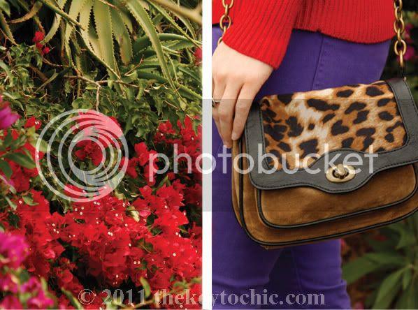 Boohoo leopard print crossbody bag