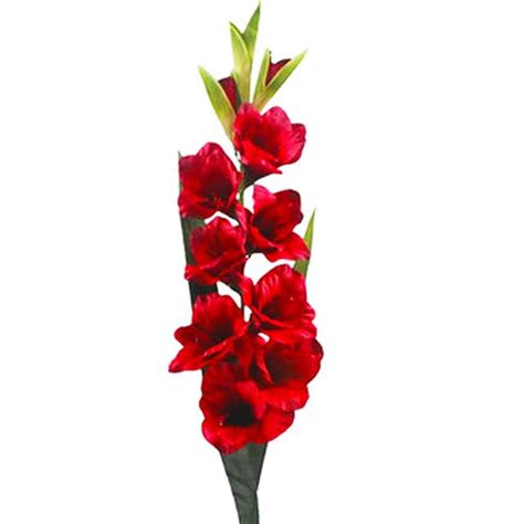 cm artificial gladiolus flower stem red decorative