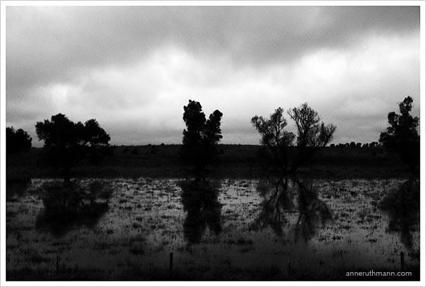 Black & White Stormy Farmland in South Dakota