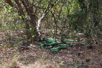 Un grupo de botánicos hizo un relevamiento el domingo 14 de agosto y encontró que hay caza y desmonte ilegal dentro del predio donde debería desarrollarse el Parque Nacional El Impenetrable.