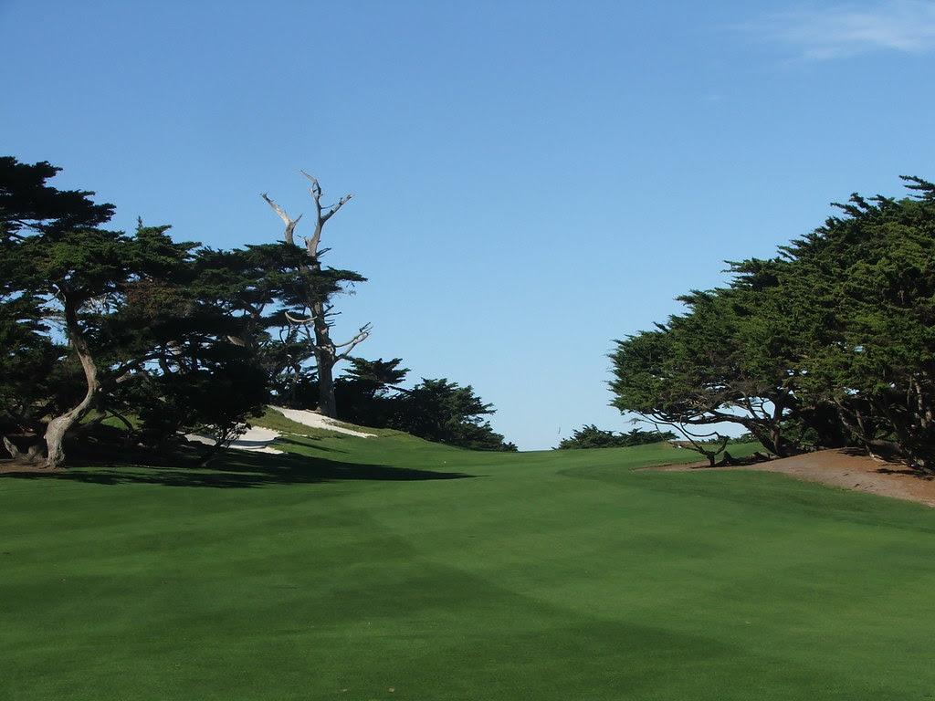 Cypress 14 fairway