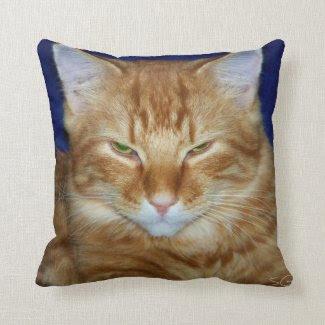 Grumpy Cat Throw Pillow Pillow