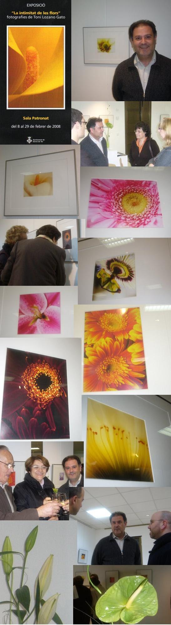 Galeria Intimitat Flors feb08